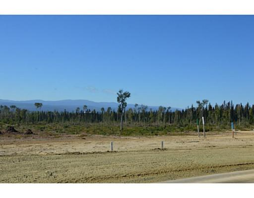 Lot 2 Bell Place, Mackenzie, British Columbia  V0J 2C0 - Photo 11 - N227294
