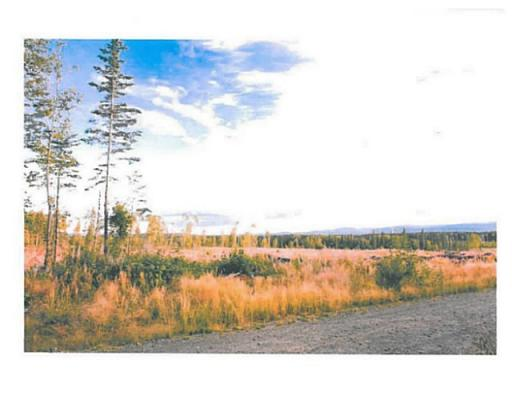 Lot 7 Bell Place, Mackenzie, British Columbia  V0J 2C0 - Photo 5 - N227300
