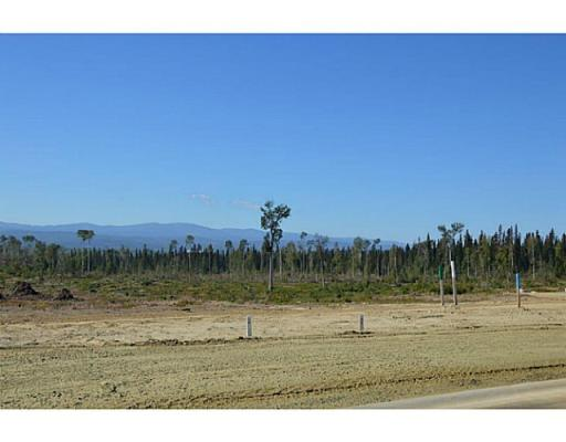 Lot 12 Bell Place, Mackenzie, British Columbia  V0J 2C0 - Photo 9 - N227305