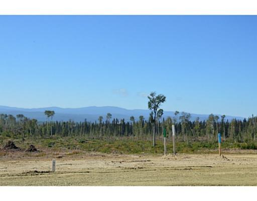 Lot 16 Bell Place, Mackenzie, British Columbia  V0J 2C0 - Photo 5 - N227309